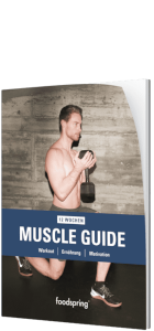 Muscle Guide